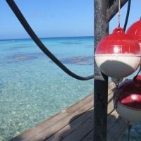 Marquises, Tuamotu et Bora Bora